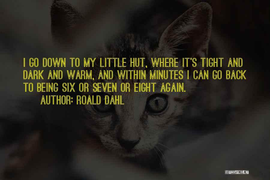 Roald Dahl Quotes 479505