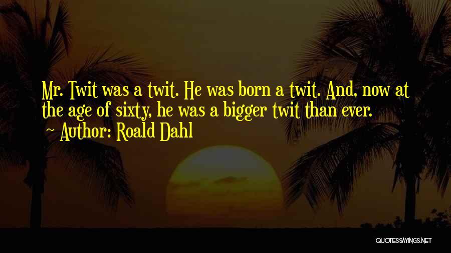 Roald Dahl Quotes 503729
