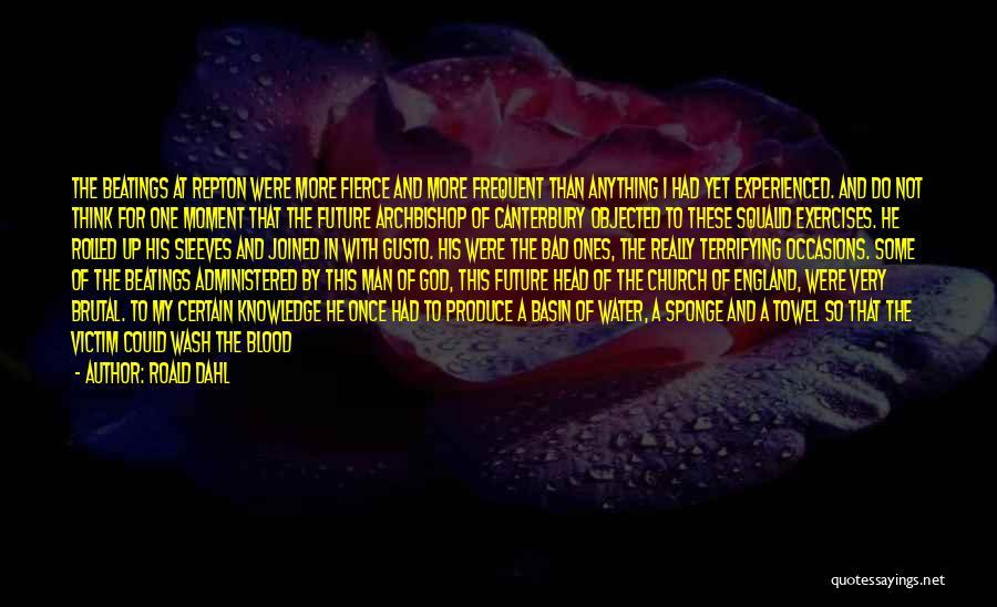 Roald Dahl Quotes 661041