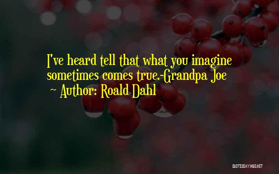 Roald Dahl Quotes 801001