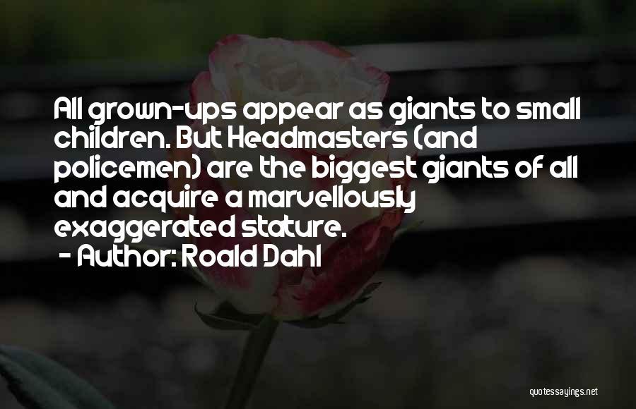 Roald Dahl Quotes 938138
