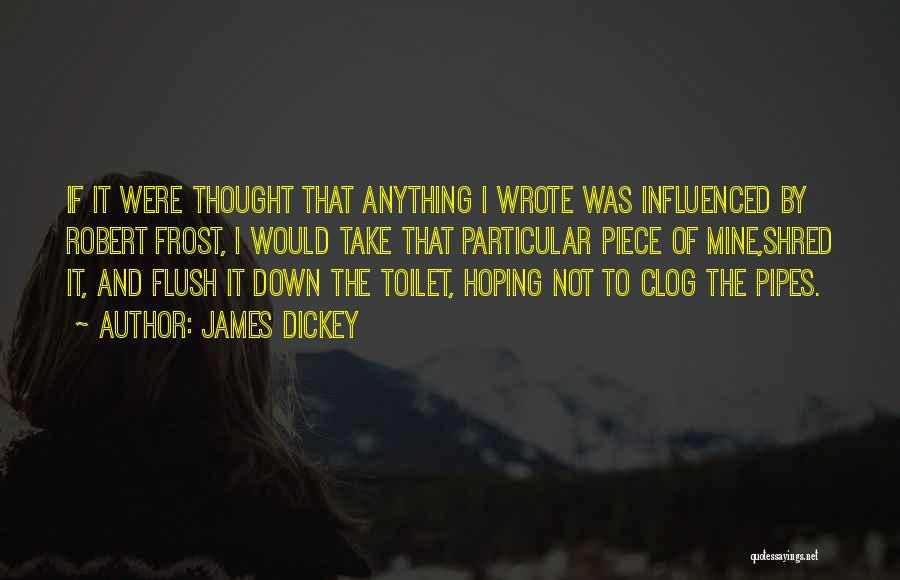 Robert B. Dickey Quotes By James Dickey