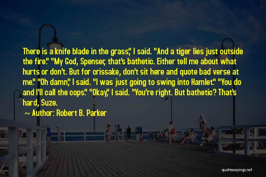 Robert B. Parker Quotes 2158092