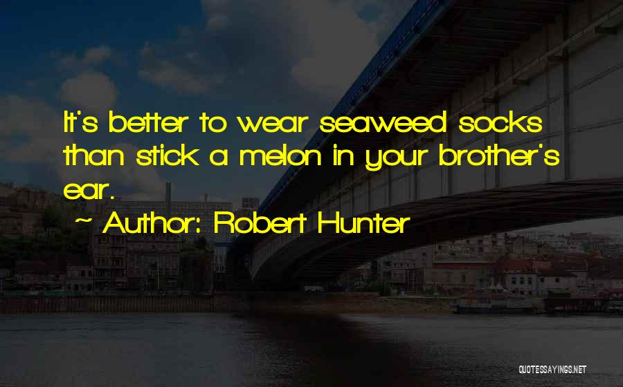 Robert Hunter Quotes 892118