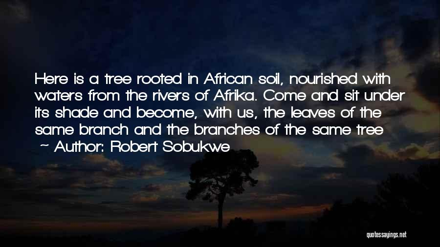 Robert Sobukwe Quotes 632619