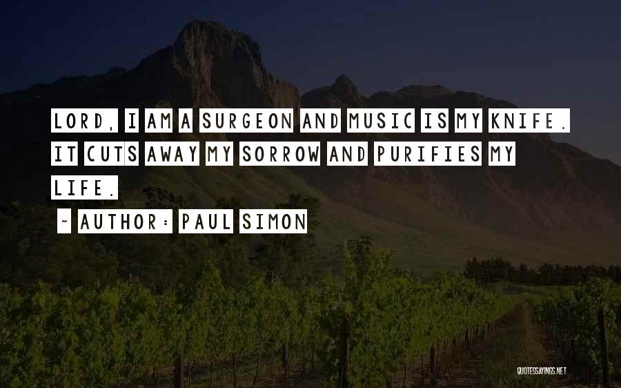 Rock And Roll And Life Quotes By Paul Simon