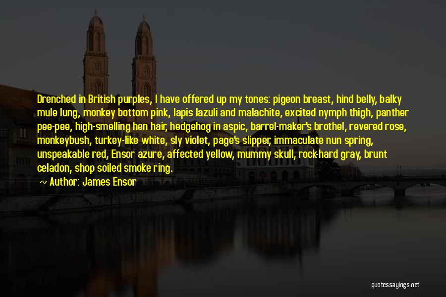 Rock Bottom Quotes By James Ensor