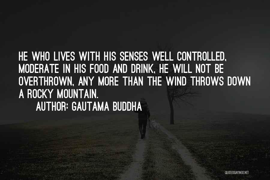 Rocky 6 Quotes By Gautama Buddha