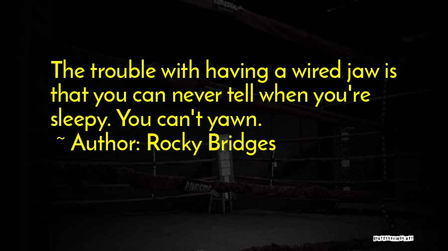 Rocky 6 Quotes By Rocky Bridges