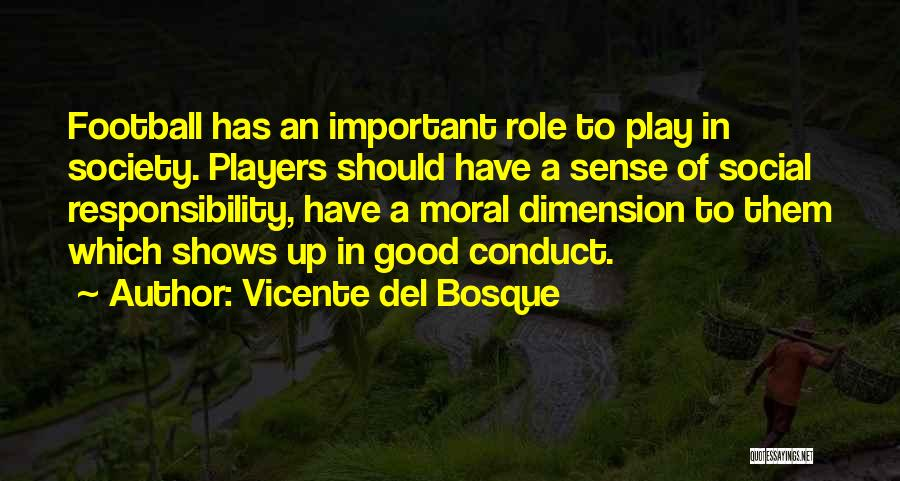 Role Players Quotes By Vicente Del Bosque