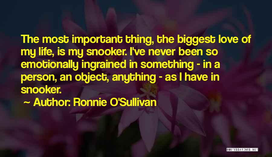 Ronnie O'Sullivan Quotes 602604