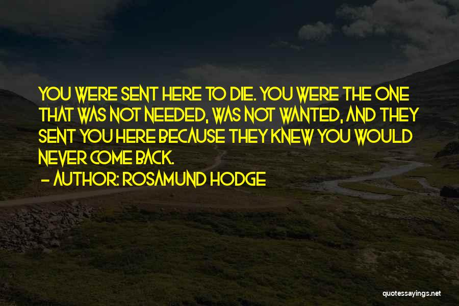 Rosamund Hodge Quotes 1090575