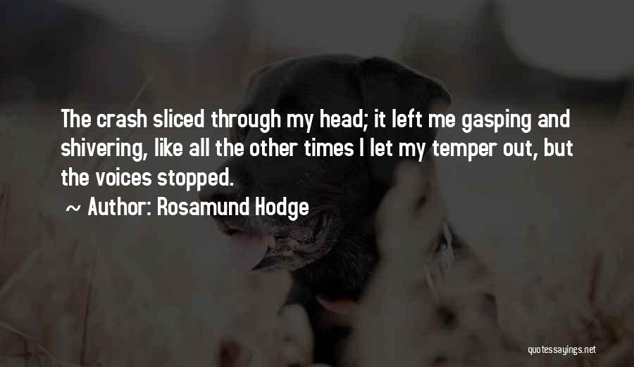 Rosamund Hodge Quotes 1349008