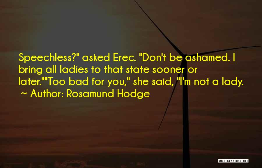 Rosamund Hodge Quotes 1442839