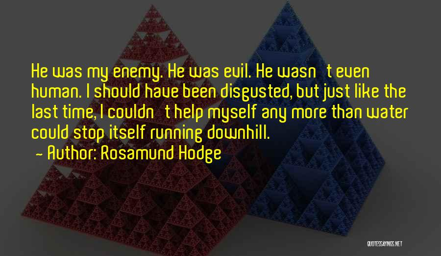 Rosamund Hodge Quotes 1913405