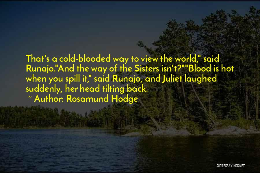Rosamund Hodge Quotes 479907