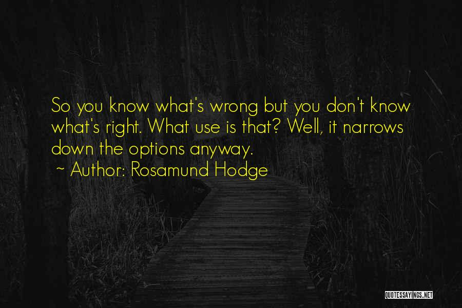Rosamund Hodge Quotes 810819