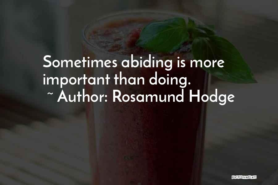 Rosamund Hodge Quotes 873560