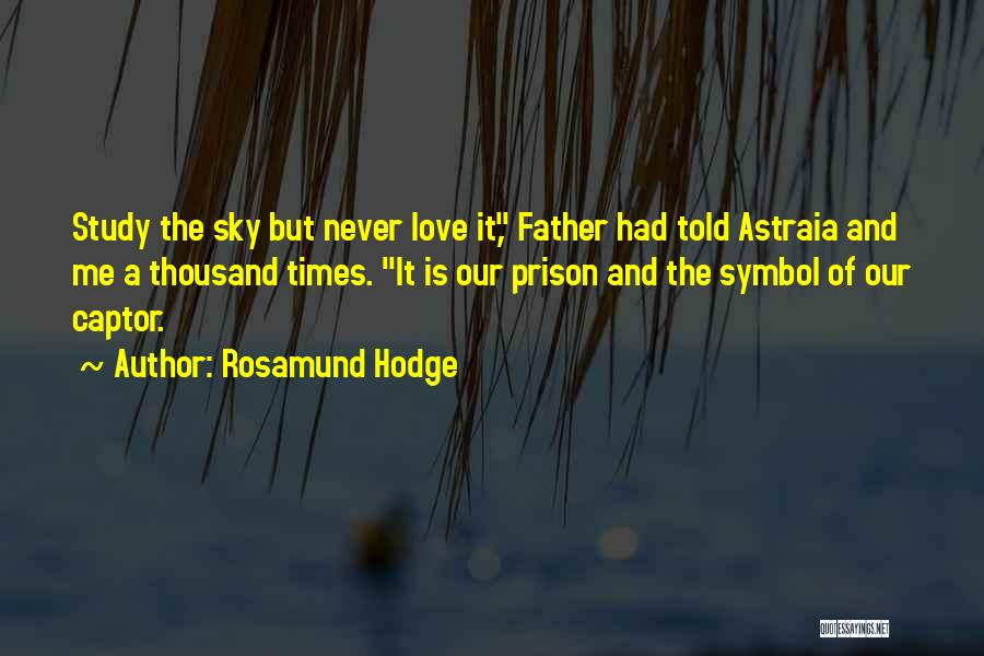 Rosamund Hodge Quotes 965973