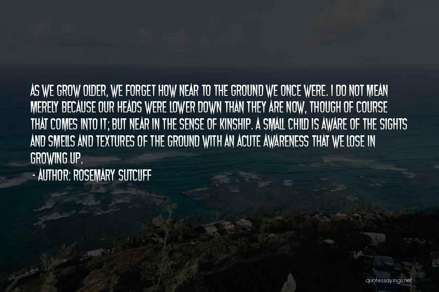 Rosemary Sutcliff Quotes 678610