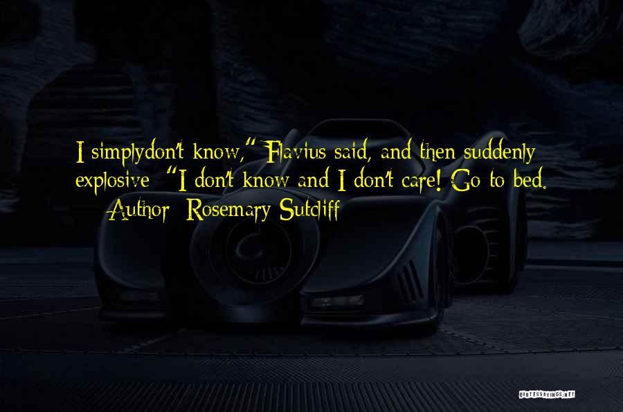 Rosemary Sutcliff Quotes 701673
