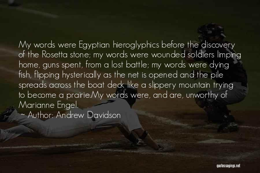 Rosetta Stone Quotes By Andrew Davidson