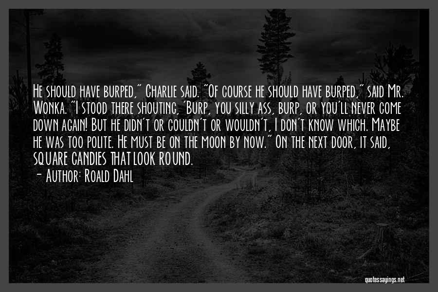 Round Square Quotes By Roald Dahl