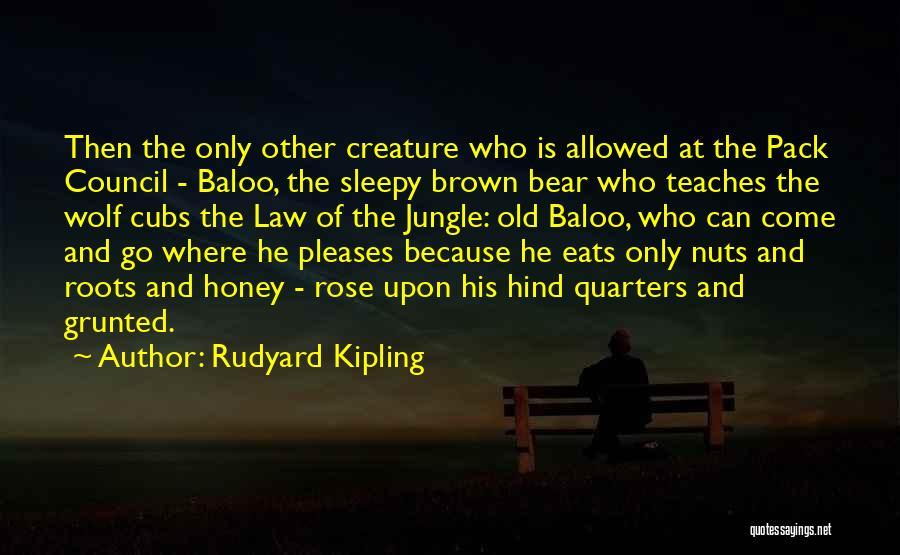 Rudyard Kipling Quotes 1632144