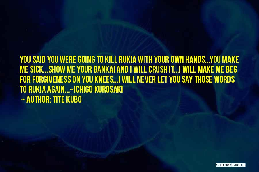 Rukia Best Quotes By Tite Kubo