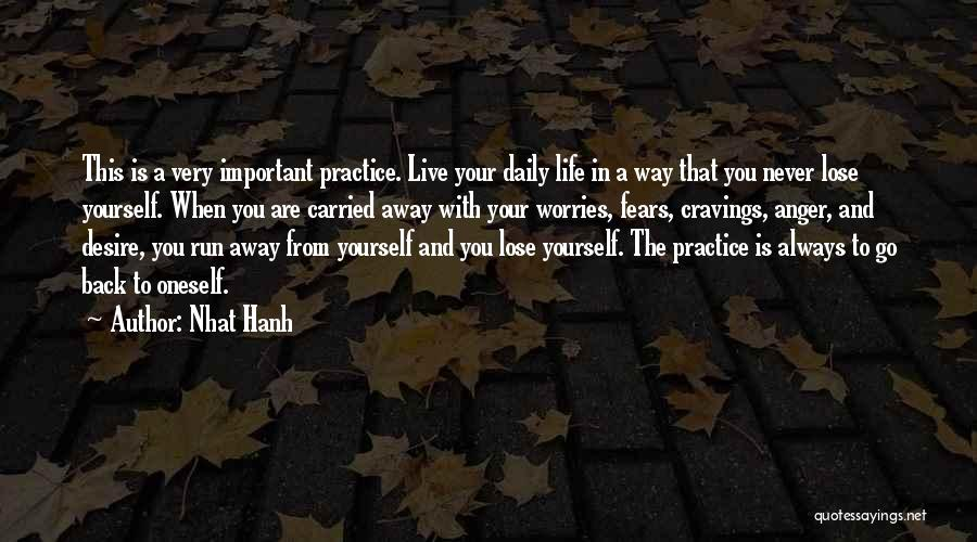 Running Away From Life Quotes By Nhat Hanh