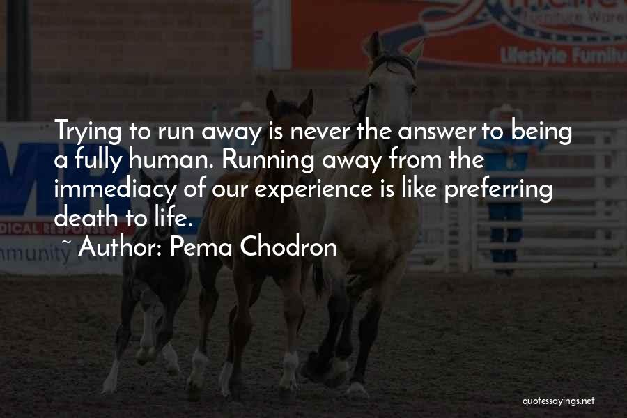 Running Away From Life Quotes By Pema Chodron