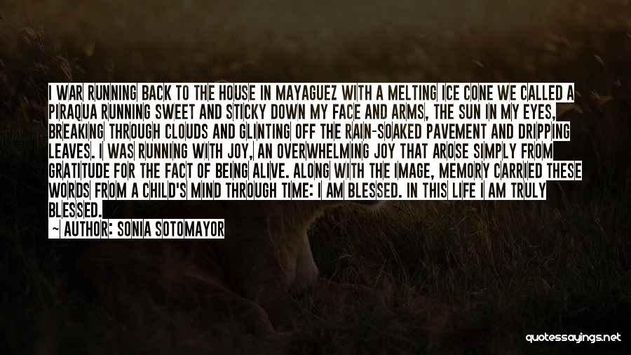 Running Through Life Quotes By Sonia Sotomayor
