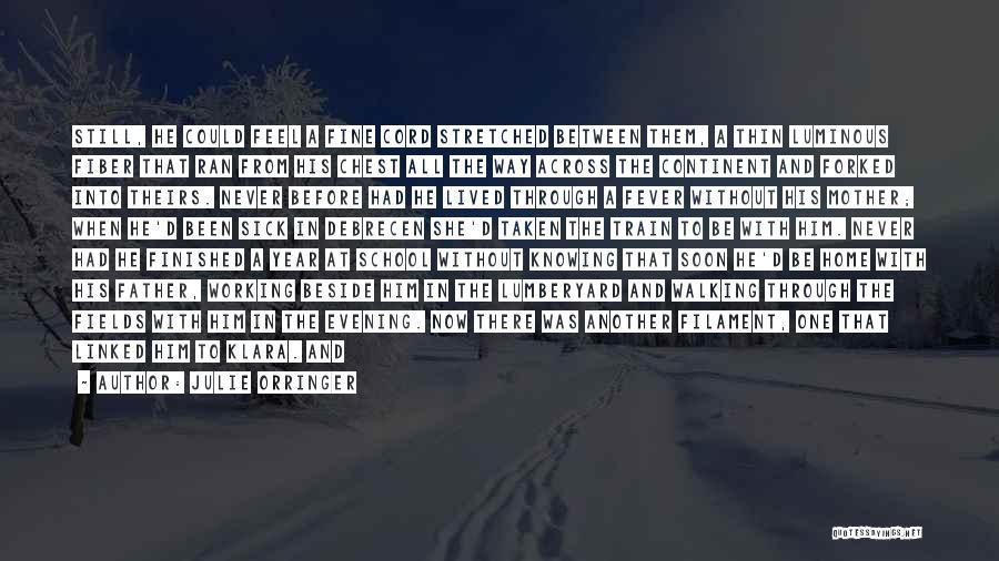 S.a.d Quotes By Julie Orringer