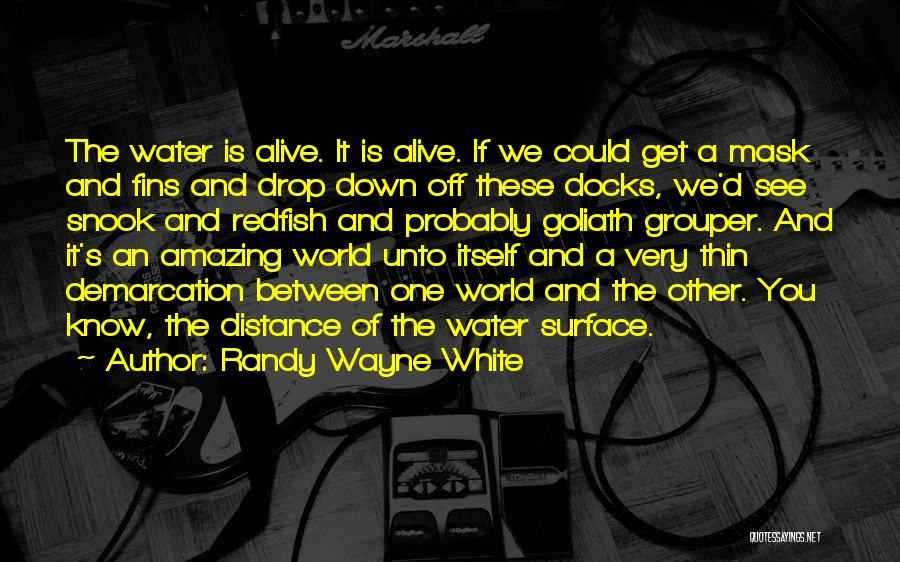 S.a.d Quotes By Randy Wayne White