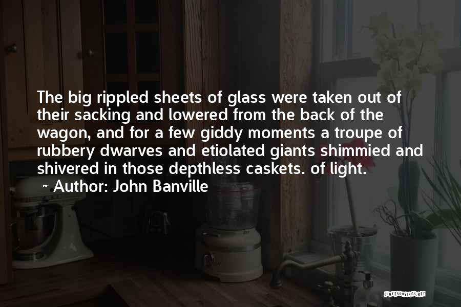 Sacking Quotes By John Banville