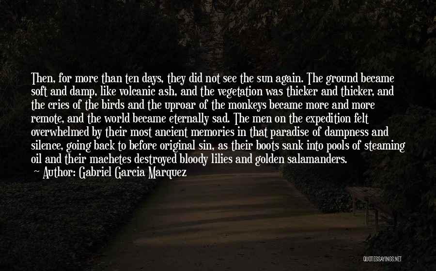 Sad Destroyed Quotes By Gabriel Garcia Marquez
