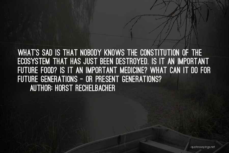Sad Destroyed Quotes By Horst Rechelbacher