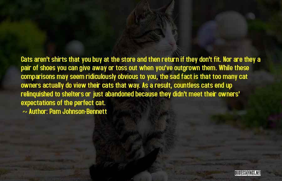 Sad Quotes By Pam Johnson-Bennett