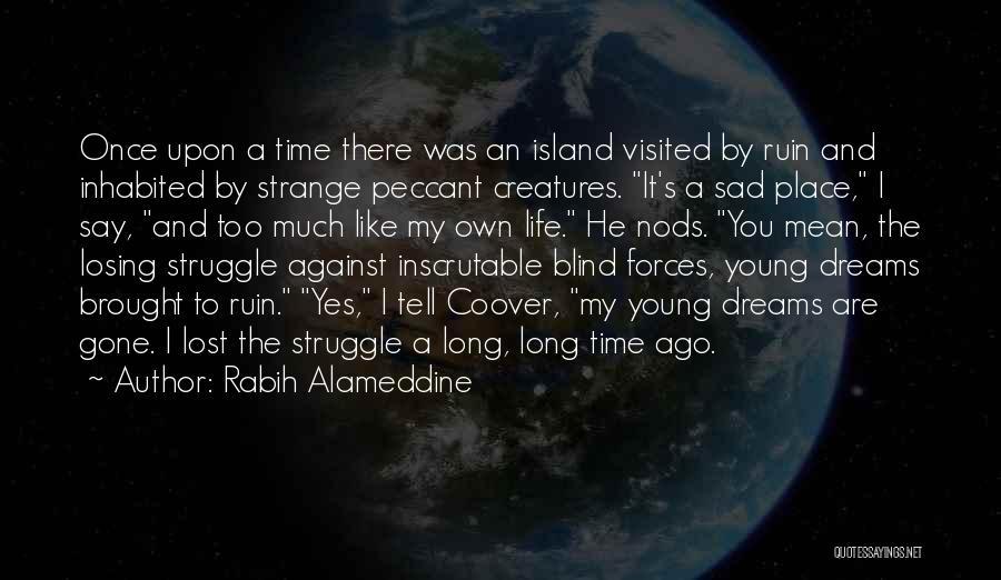 Sad Quotes By Rabih Alameddine
