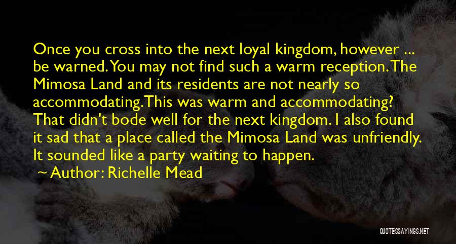Sad Quotes By Richelle Mead