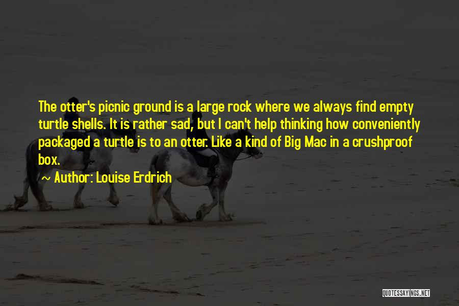 Sad Thinking Quotes By Louise Erdrich