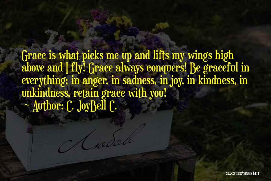 Sadness And Joy Quotes By C. JoyBell C.