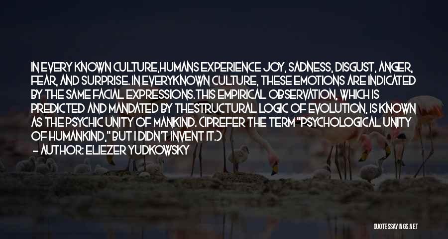 Sadness And Joy Quotes By Eliezer Yudkowsky