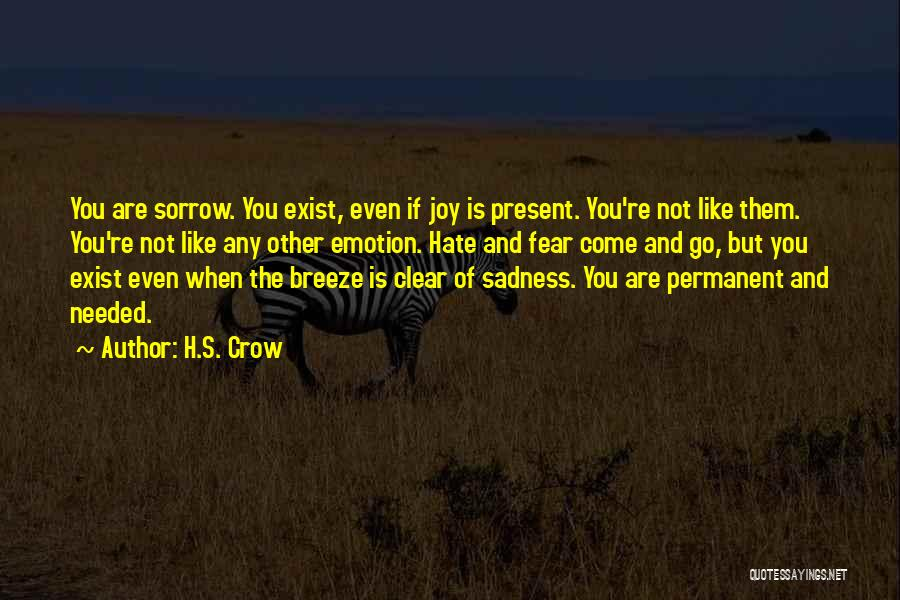 Sadness And Joy Quotes By H.S. Crow