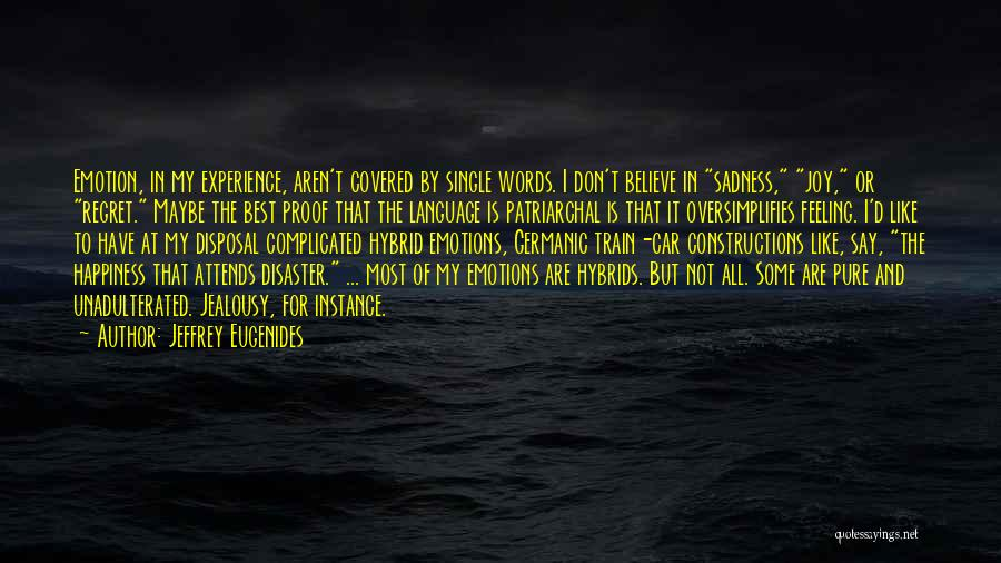 Sadness And Joy Quotes By Jeffrey Eugenides