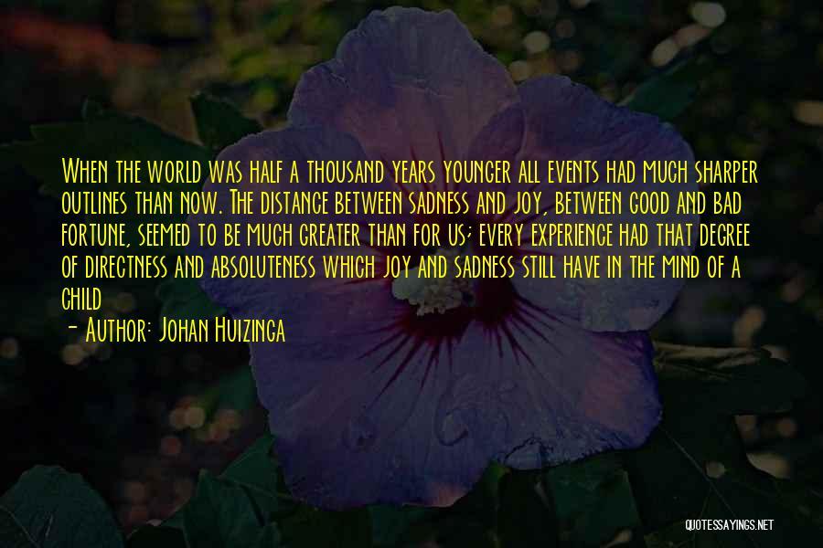 Sadness And Joy Quotes By Johan Huizinga