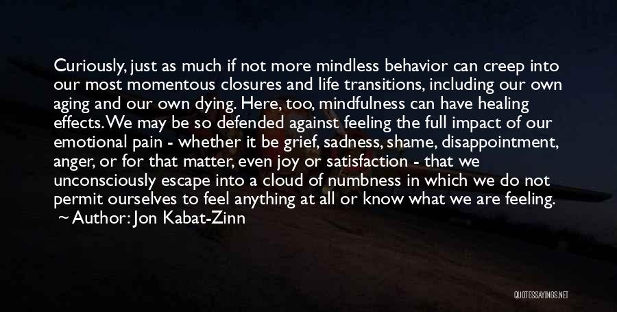 Sadness And Joy Quotes By Jon Kabat-Zinn