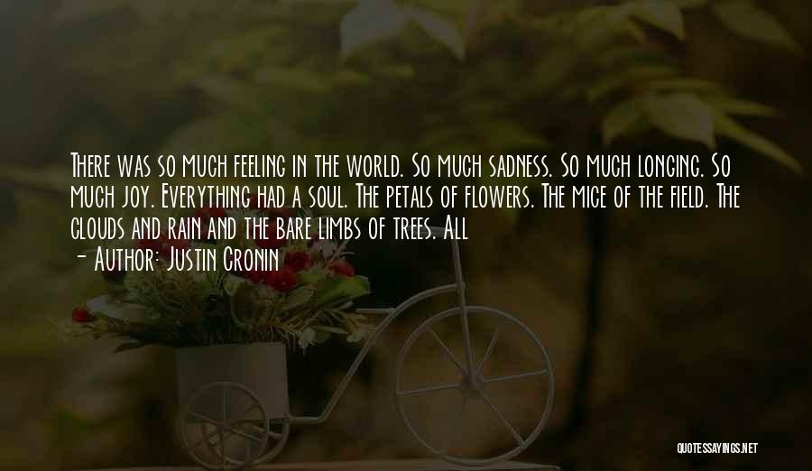Sadness And Joy Quotes By Justin Cronin