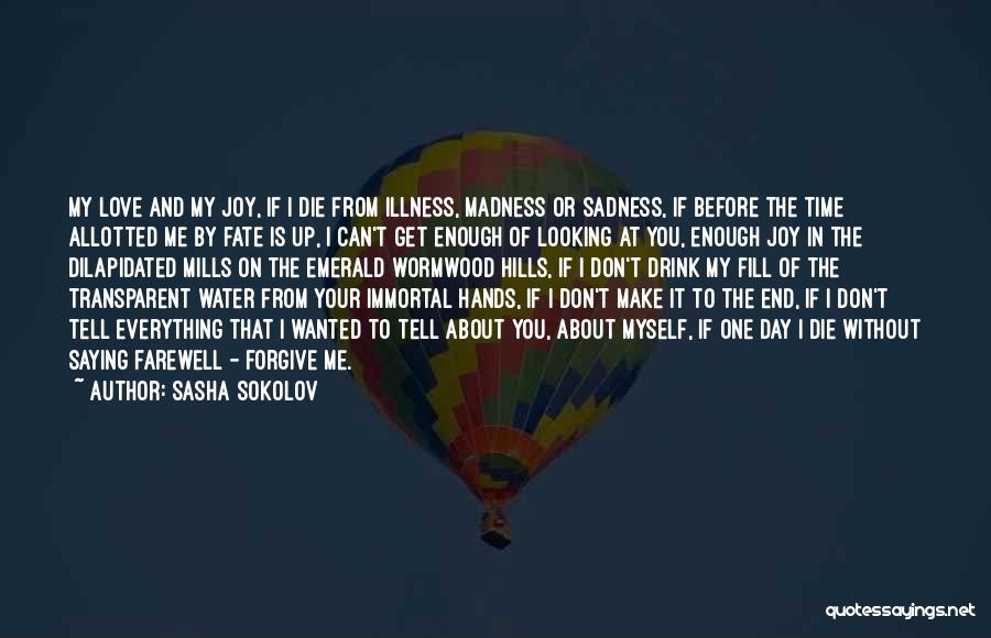 Sadness And Joy Quotes By Sasha Sokolov