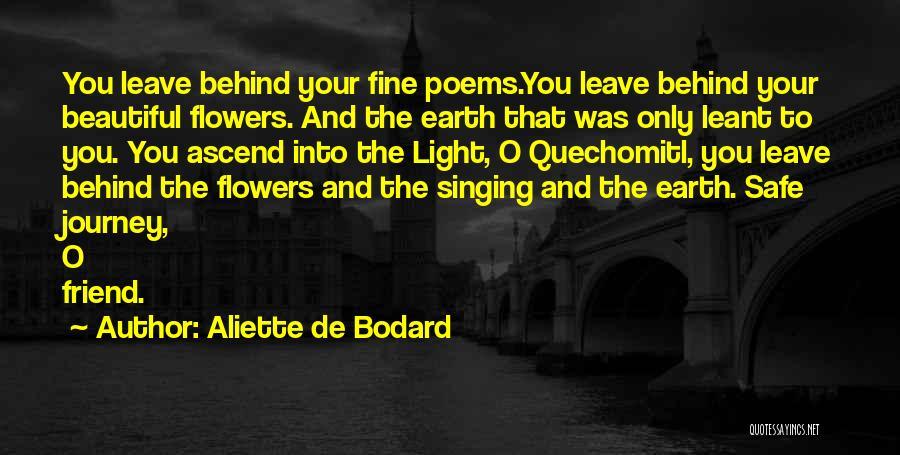 Safe Journey Quotes By Aliette De Bodard